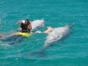 Voorgetrokken worden door maar liefst 2 dolfijnen
