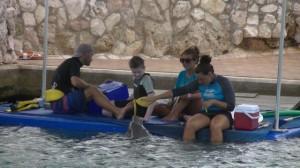 """Nubia: """"Hé, Luca, kom op nu. Het is zo fijn in het water!"""""""
