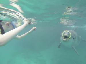 Luca kijkt hoe Nubia de ring onder water pakt.