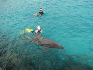 Joëlle en Kanoa komen even langszwemmen