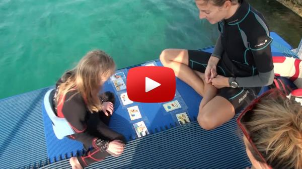 dolphin_therapy_curacao_video