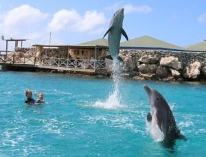met de stok in het water, Bonnie en Sami springen er hoog overheen..!