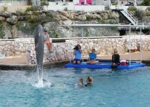 dolfijn Bonny springt over de stok die Julian vasthoudt.