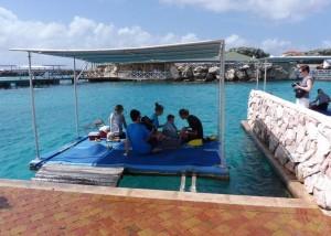 Dock-dag, dus Stef mag helpen en wij genieten van dichtbij mee