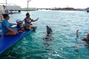 Stef gebaart mee met dolfijntrainster Sandra