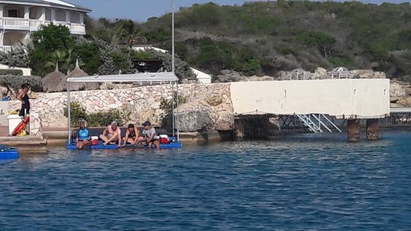Eerst kennis maken met onze dolfijnen. Wij mochten zwemmen met Chabelita en Kanoa.
