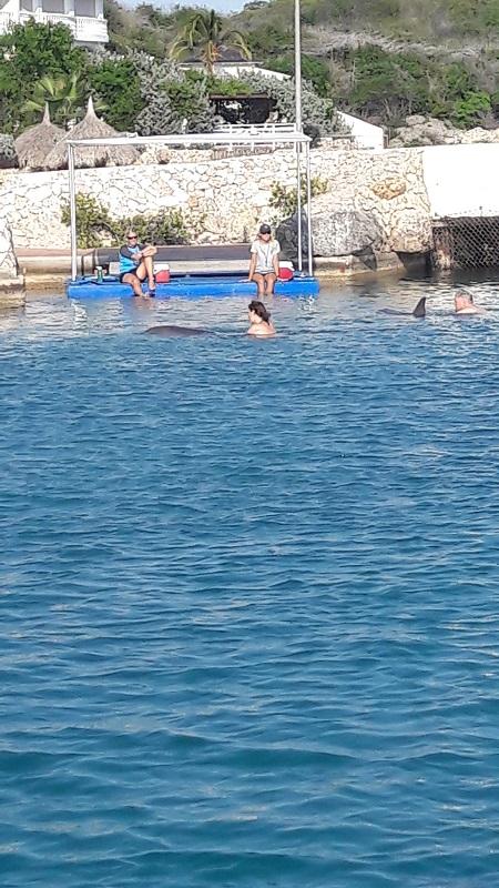 Daarna heerlijk zwemmen en kunstjes doen met die twee.