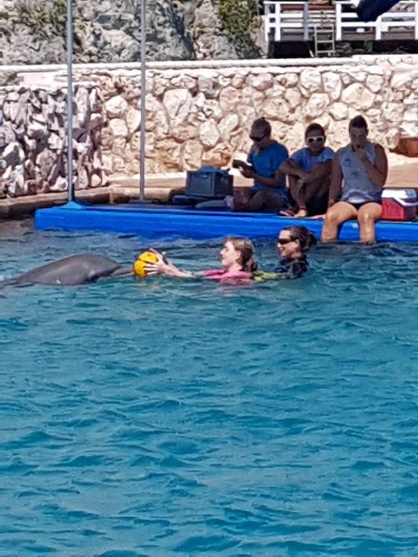 Allebei mogen ze spelen met de bal met de dolfijnen.