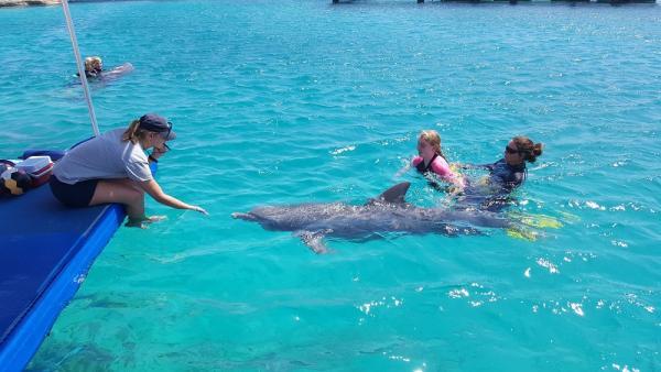 Op het dok zit de dolfijnen trainster. De therapeut Merel is er de hele tijd bij in het water.