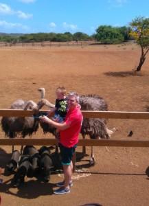 Julian en Marko voeren de struisvogels