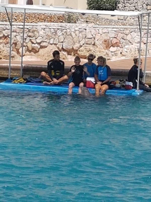 Tijdens de dok tijd leert Jesse nog wat bijzondere commando's van de dolfijn trainster.
