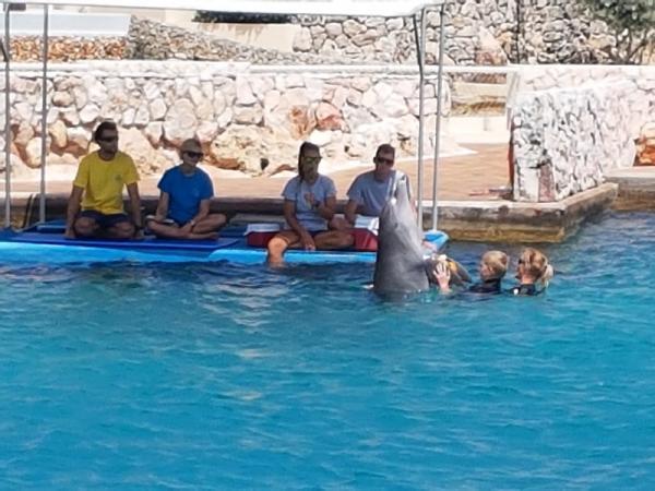 Een vol dok voor Jesse. Naast Sebastiaan in het gele shirt was er ook nog een stagiaire dolfijntrainer. Goed om te oefenen met praten in een groep.